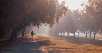 Girl with balloons in autumn park - бесплатный image #273791