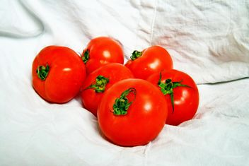 Six Tomatoes - Kostenloses image #274831