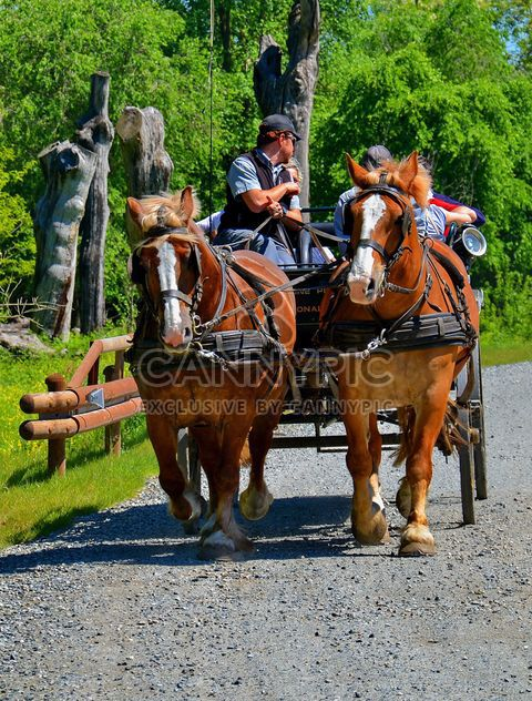 carriage drawn by two horses - image gratuit(e) #274921