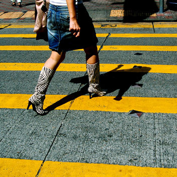 zebra crossing - Free image #275681