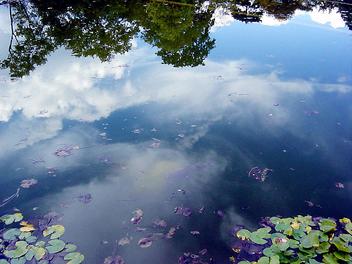 miroir de l'eau... - бесплатный image #276071