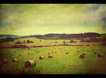 Hayrick Field - image #278301 gratis