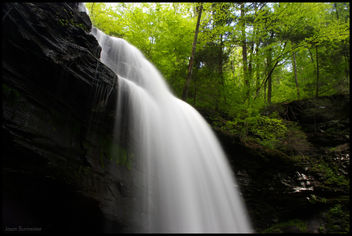 Ricketts Glen State Park - бесплатный image #278451
