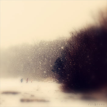 Winter Walk - image gratuit #280861