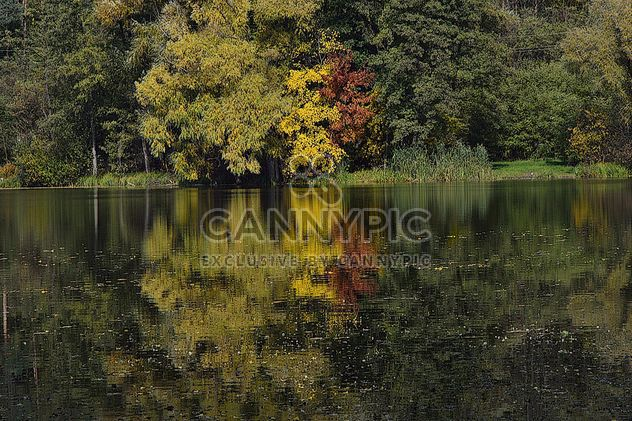 Autumn lake - Free image #280941
