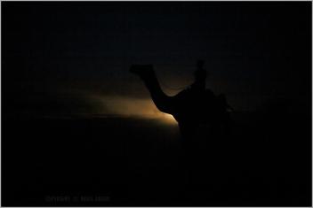 last ride, khuri - Free image #282621