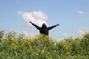 Freedom #2 - Kostenloses image #285071