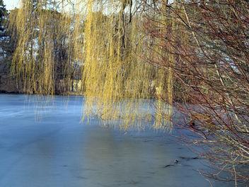 ~~ Winter Poesie **~~ - Free image #287741