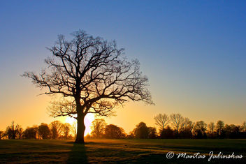 sunrise - image #288181 gratis