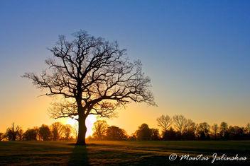 sunrise - бесплатный image #288181