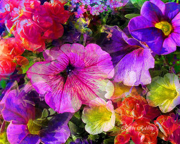 Summer - Free image #288821