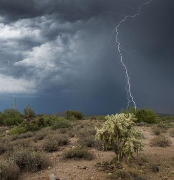 daytime lightning - бесплатный image #289061