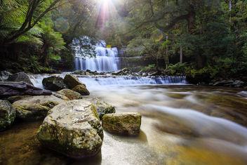 Liffey Falls - Free image #289151