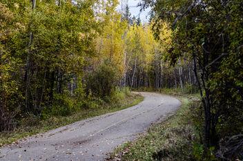Path - Free image #289521