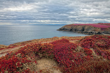 Irish Pomegranate Coast - HDR - image gratuit #290191