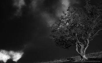 Gathering Storm - Free image #290721