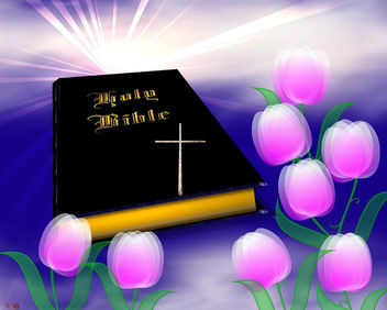 Holy Bible - Kostenloses image #291311