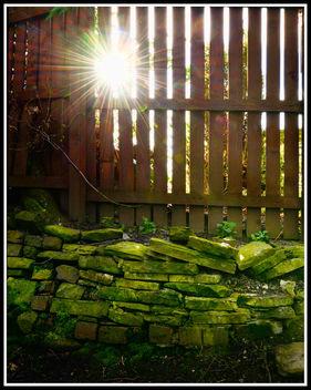 Spring sunshine - image #291411 gratis