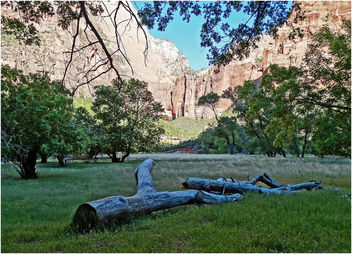 Zion NP, Grotto Trail Meadow 5-1-14e - image #292261 gratis