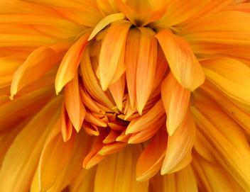 Flammes ... Feu ... Chaleur ... Amour ... :) - Free image #293101