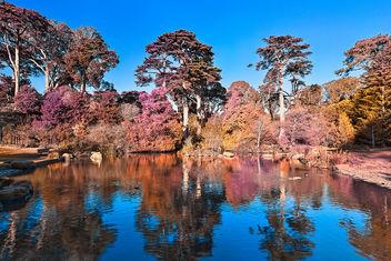 Pastel Pondscape - HDR - Free image #293771
