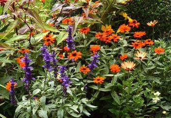 Et encore dans le petit jardin public ... - Kostenloses image #294011