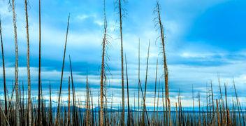 Prison Lake - image #294281 gratis