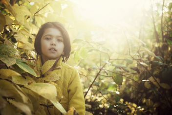 autumn child - image #294611 gratis