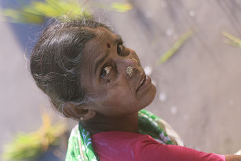 Portrait of Indian Women Farmer - Free image #295321