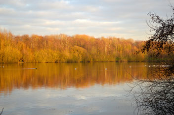 Chorton Water Park - A winter walk in late December 2015 - image gratuit #295571