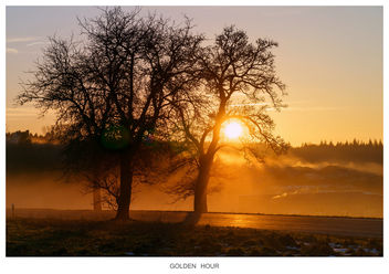 GOLDEN HOUR - image #295651 gratis