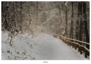 Snow - image #295871 gratis