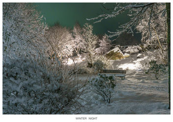 Winter Night 3 - Free image #296001
