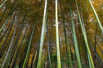 Wuxi, Jiangsu, China - бесплатный image #296051