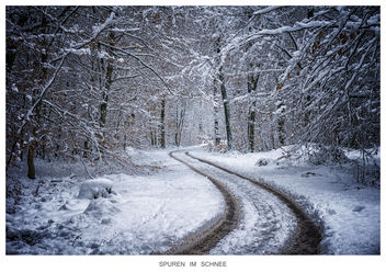 tracks in the snow - image #296261 gratis