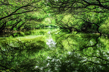Green river - image #298711 gratis