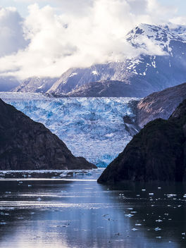 Sawyer Glacier - Tracy Arm Fjord - Portrait - Free image #299411