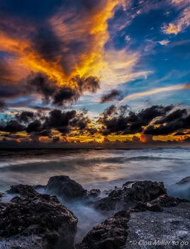 My Florida - Free image #300901