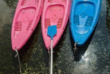 Colorful kayaks docked - image #301661 gratis