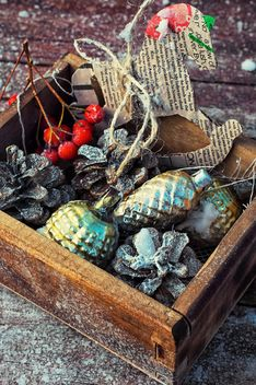 Christmas decorations in box - image #301981 gratis