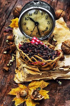 Vintage alarm clock, autumn leaves and nuts - бесплатный image #302001