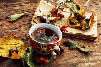 Cup of tea, dry leaves, chestnuts and book - бесплатный image #302011
