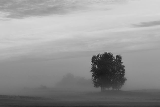 Morning mist - image #302271 gratis