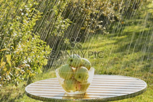 Summer rain and green apples - Free image #303271