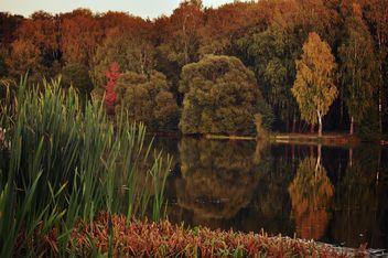 Autumn park - Free image #303961