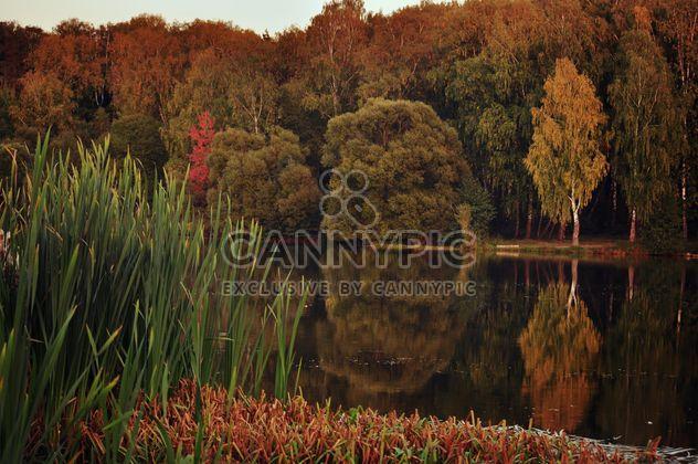 Parque de otoño -  image #303961 gratis