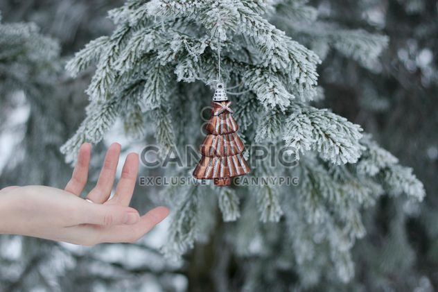 Hand reaching the Christmas toy - Free image #304091