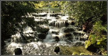 P1470209 Carshalton Ponds.. - image gratuit #306661