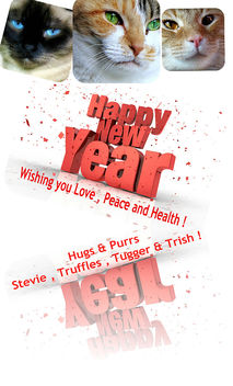 Happy New Year Dear Flickr Friends ! - Free image #309341