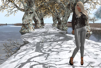 Sleek in Silver - image #314991 gratis